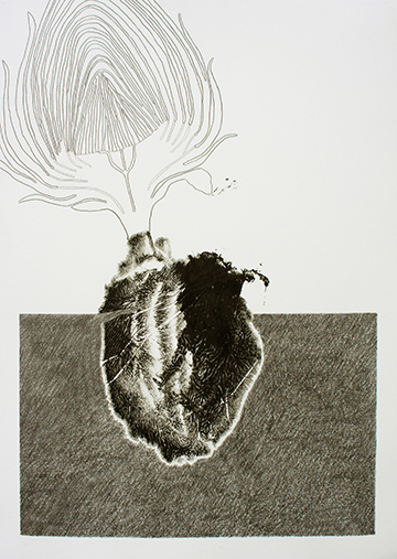 Coeur d'artichaut. Monotype and pencil on paper. 48×36 cm