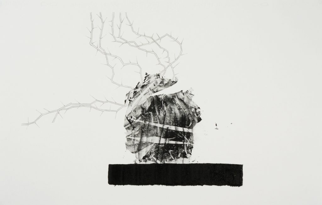 F monotype and pencil on paper 41x56 cm