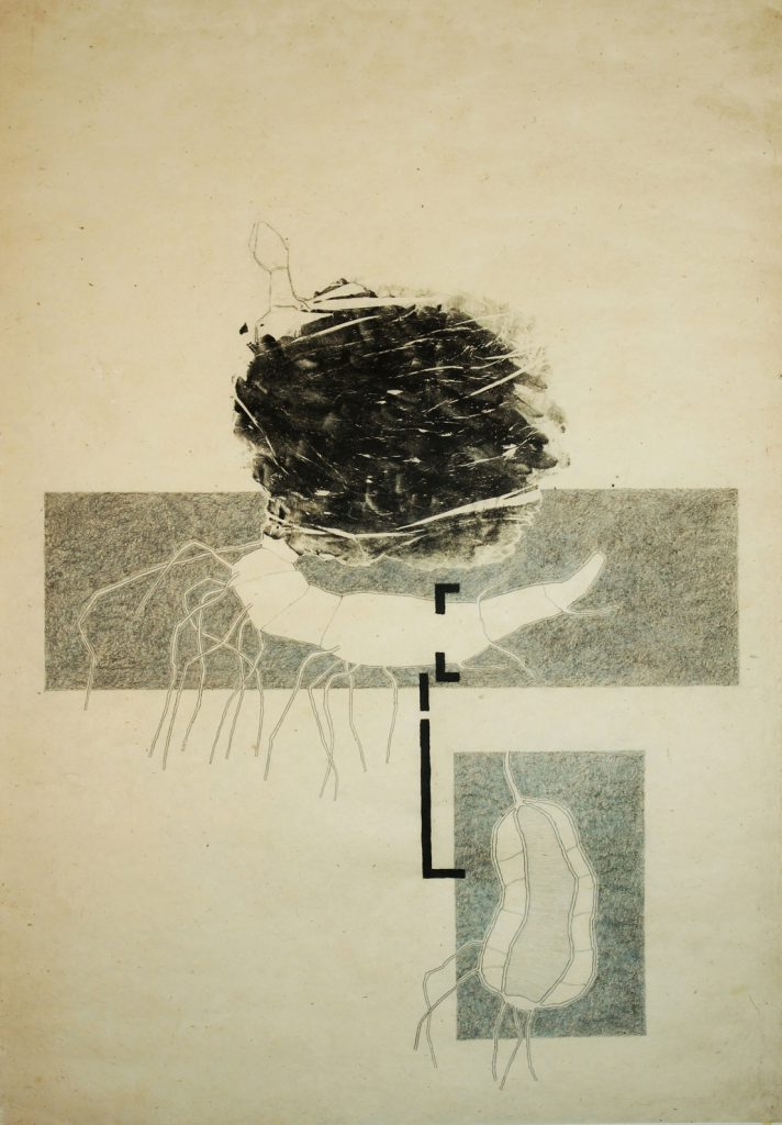 A monotype and pencil on japanese paper 78x62 cm